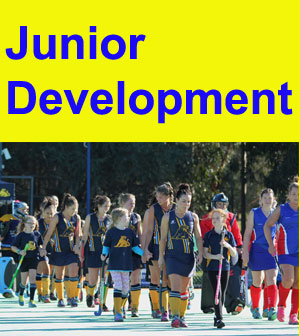 Junior-Development-Series